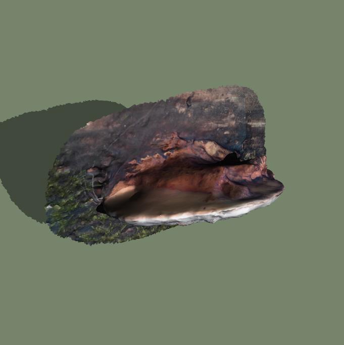 Un objet contendant en 3D