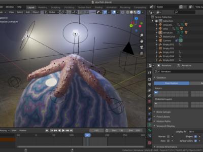 Capture d'écran d'une étoile de mer 3D dans Blender